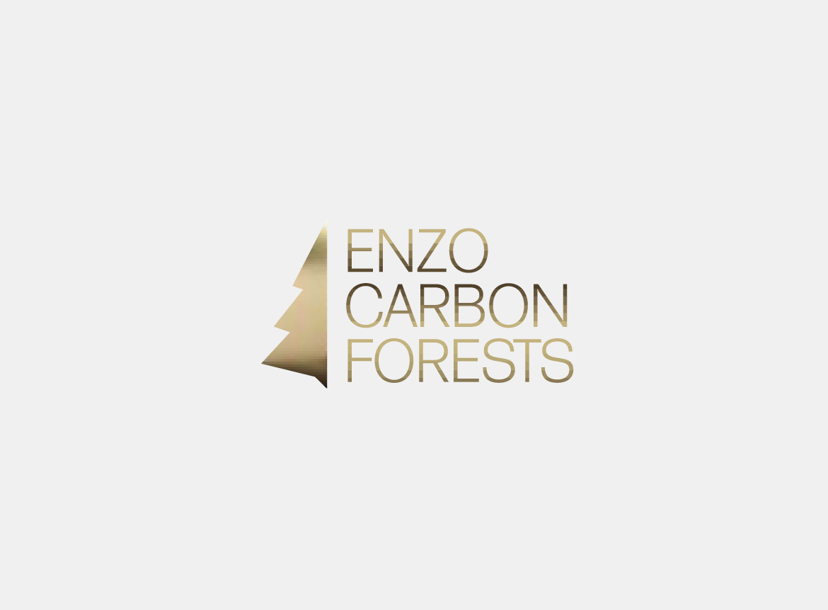redfire-design-enzo-carbon-forest-logo