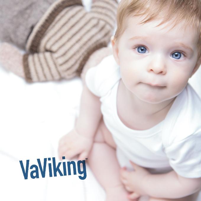 Vaviking-680x680